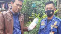 Berita Banten, Berita Tangerang, Berita Tangerang Hari Ini: Belasan Ular Berbisa Masuk Permukiman Warga Jambe